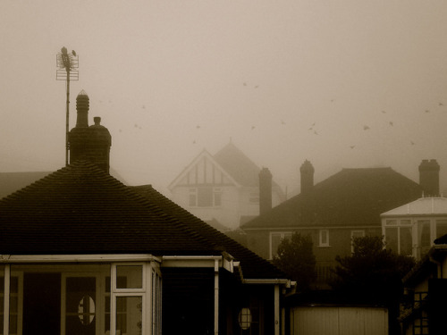 Spooky on Flickr.What do you guys think of this? ;D