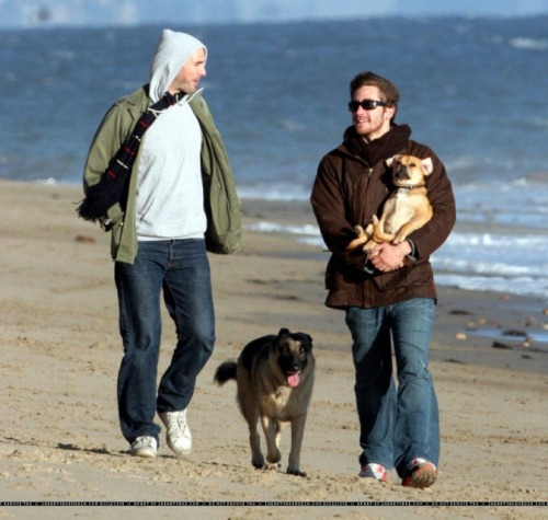 Actor Jake Gyllenhaal carrying a puppy. :)   Submitted by curiosityband.