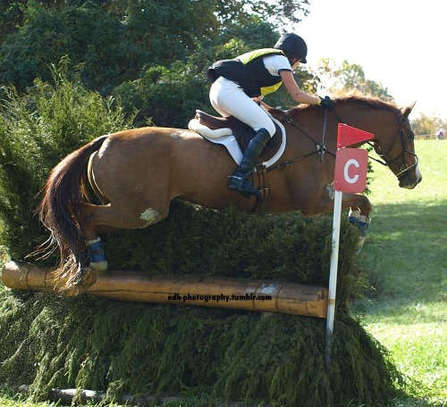 edh-photography:  Abbie Golden & Arundel Fair Hill CCI** 2012