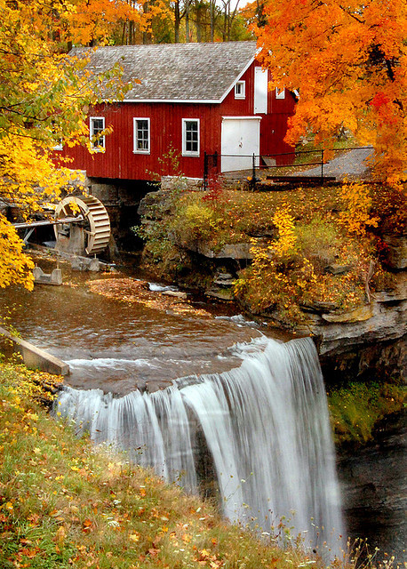 bluepueblo:  Autumn, Morningstar Mill, South Carolina photo via october