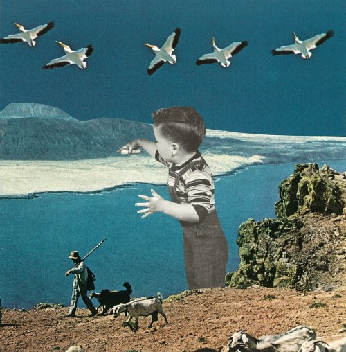 collageartbyjesse:  www.society6.com/studio/jessetreece/storewww.collageartbyjesse.tumblr.comwww.facebook.com/collageartbyjessewww.twitter.com/jessetreece