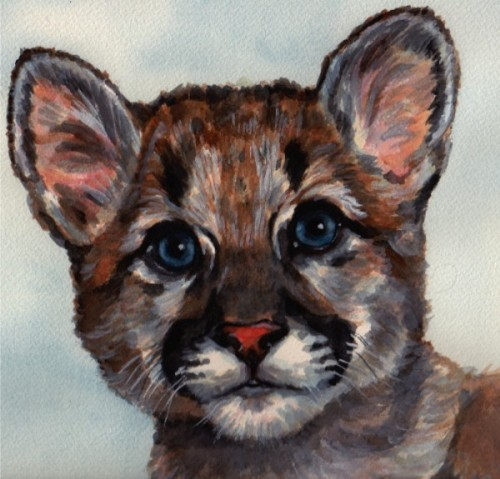 Baby Shasta Watercolor by Carol Wells