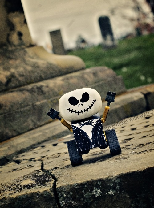 adventureswithwalle:  Wall-e Skellington, the pumpkin king. 302/366