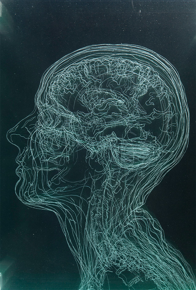 explore-blog:  Artist Angela Palmer's stunning layered MRI self-portraits engraved in glass.  Name your price, Angela. What will it take to get my brain, on glass, on my wall?
