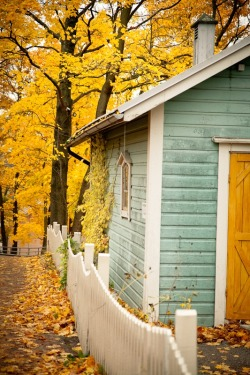 conflictingheart:  Fall cabin.