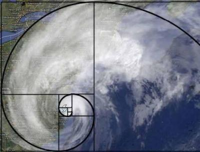 Fibonacci spiral seen in Sandy's formation