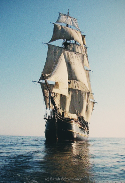HMS Bounty, 2009 Hard to believe she's gone now…
