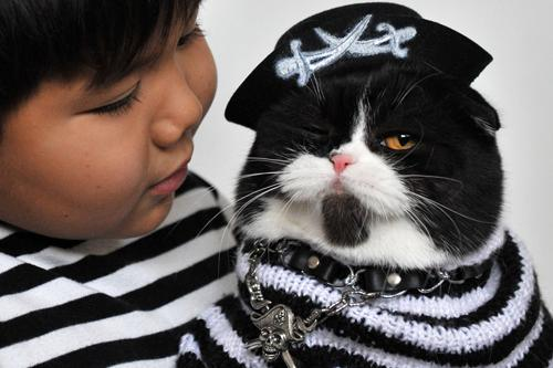 A young boy and his Scottish Fold cat, both of whom are dressed in pirate costumes, pose during a cat exhibition on Oct. 14 in Bishkek, Kyrgyzstan.Must-see animal photos of October