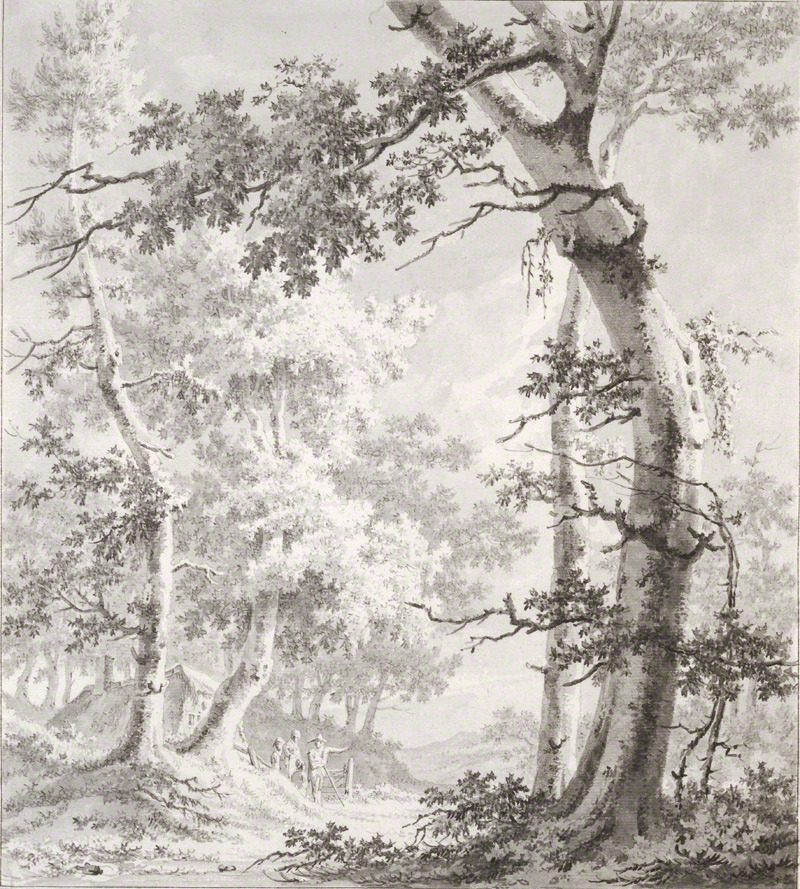 Wooded Landscape, about 1780–90, Paulus Liender Ironically, this artist best known for painting trees made his living as a lumber dealer (and later, a wine-tax collector).