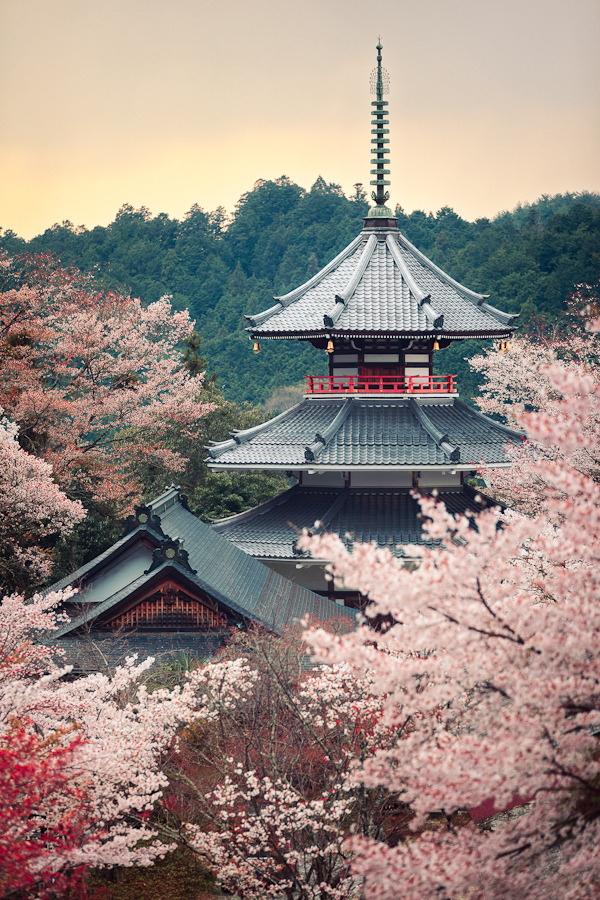 travelingcolors:  Kinpusenji pagoda, Mount Yoshino | Japan (by Rickuz)