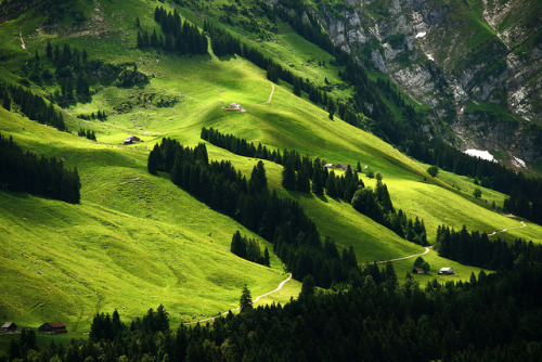 spammo91:  Waldundwiesenlandschaft by Markus Moning on Flickr.