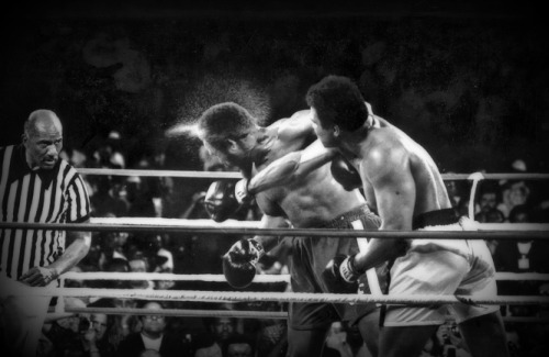 "cartermagazine:  Today In History 'Muhammad Ali defeated George Foreman to regain the World Heavyweight Boxing Championship in Kinshasa, Zaire, on this date October 30 1974. This legendary fight was dubbed the ""Rumble in the Jungle.""' (photo: Muhammad Ali and George Foreman) - CARTER Magazine"