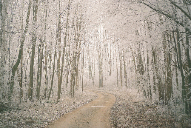 Frozen World by stephanlo1 on Flickr.