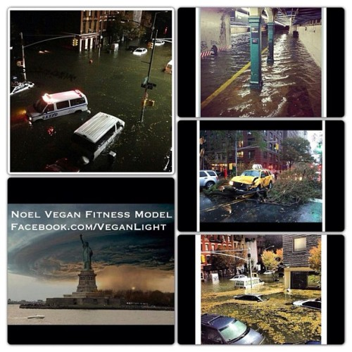 Seeing my NYC under water breaks my heart. Prayers and love to all who faced the storm; NY, NJ, NC, MD, CT, VA, IL, and everywhere else.  veganlight:  For Everyone Who Thought Hurricane Sandy Was A Joke. Don't Play With Mother Nature - www.Facebook.com/VeganLight