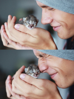 Okay, I hate cats, but this is fricken adorable