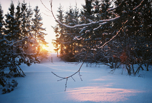 sunset by Liis Klammer on Flickr.