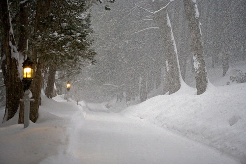 newenglandisbeautiful:  Blizzard Lane by The Roaming Ranger on Flickr. Vermont