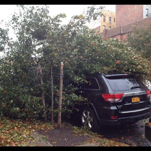 Unlucky car #sandy