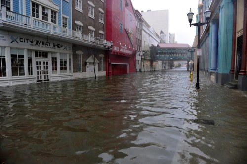 Every time a city floods I briefly wish we could flood all the cities and live in the trees, escape the concrete jungle, return to Eden. Then I remember I hate camping. Here's to fighting off Mother Nature when she freaks out like this.