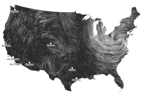 thabigcomeup:  Wind Map of the United States