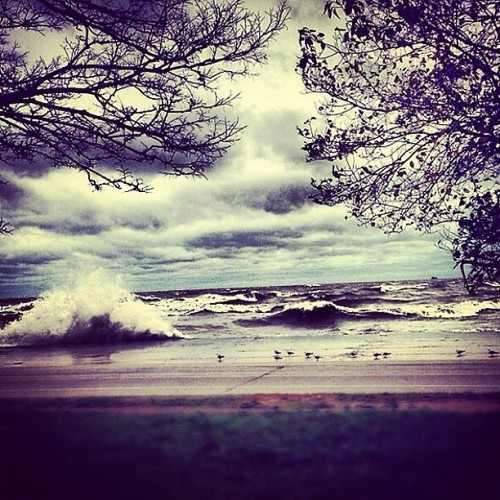 angeljaygarcia:  Lake Michigan right now. I love working by the lake! #Sandy #Waves #Cold #Dangerous #Chicago #LakeMichigan