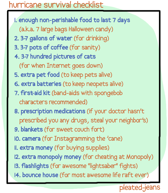 pleatedjeans:  hurricane survival checklist