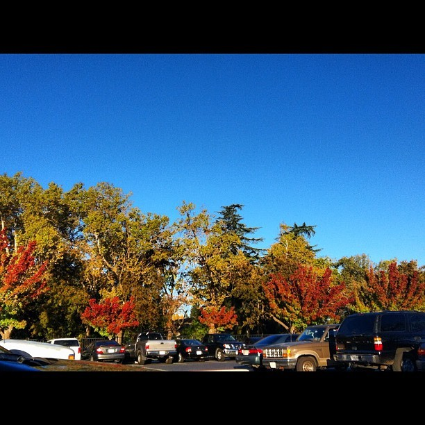 GORGEOUS #fall colors on the #trees by campus. #loveit best part of fall is seeing the colored leaves. #leaves #fallcolors #amazing  (at Stadium Parking)