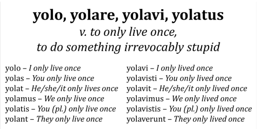 terrasigillata:  o-eheu:  The conjugations of yolo. It had to be done.  let's get some subjunctives all up in this yolem - I might only live once yolet - let him only live once! yolemus - let us only live once!
