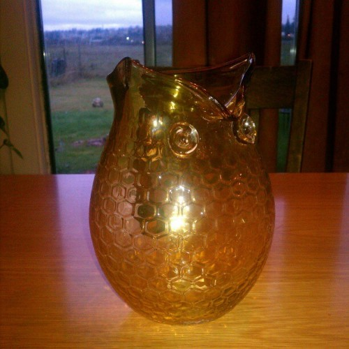 Look what I woke up too!!! My honey got me my owl pitcher!! #besthusbandever #lovemyman #loverarmymanofmine #love #inlove #inspiration #ig #igaddicts #owl #honeycomb #pitcher #igaddicts #igeveryday #instadaily #images #inspired #goodmorning #presentjustbecausehelovesme