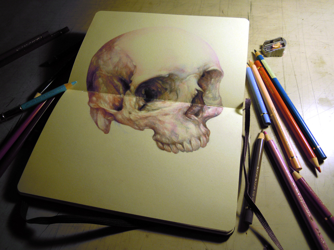 marcomazzoni:  study for a pink skull