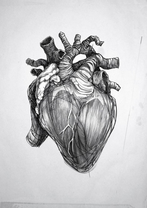 martinekenblog:  The Heart by Bartek Elsner
