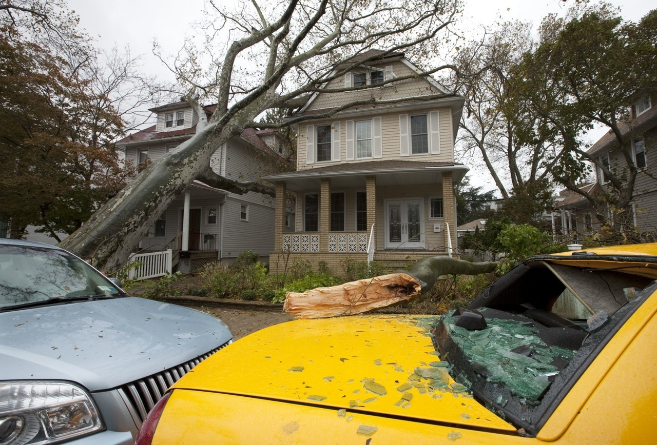 The Hurricane Sandy death toll is now at 38, according to the Associated Press.   The death toll climbed rapidly, and included 17 victims in New York State — 10 of them in New York City — along with five dead in Pennsylvania and four in New Jersey.  Many of those casualties were the result of fallen trees, like the one in Brooklyn above. Prior to coming ashore here in the States, Sandy killed 69 people in the Caribbean. [Image via AP] -Cord