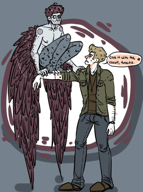 thedevilwearssamwinchester:  i can dig harpie!cas obligatory shoulder touching replaced by obligatory arm perching yup