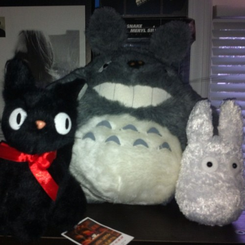 Some stuff i got at #nycc #totoro #gigi #jiji #cat #cute #plush