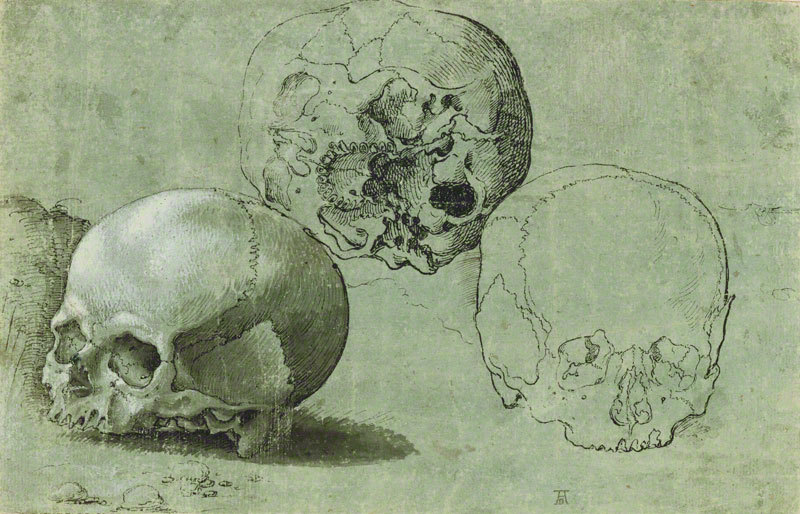 What remains. Study of Three Skulls, about 1530, Barthel Beham. The J. Paul Getty Museum