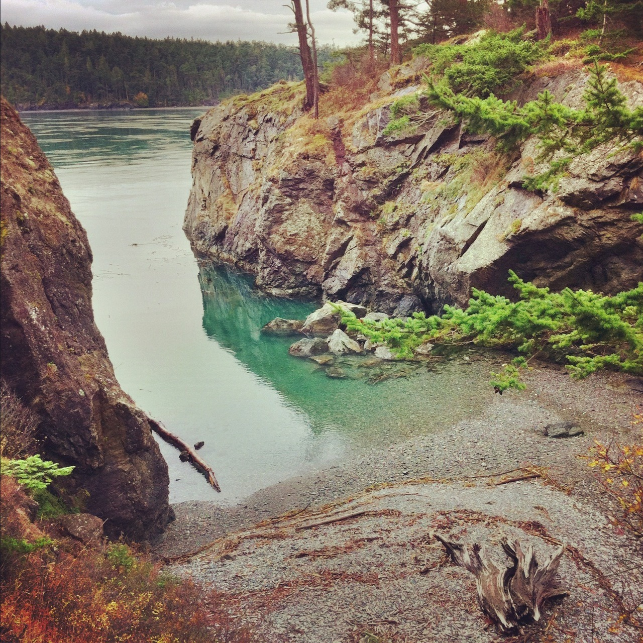 This little beach in my town Anacortes has a serious Moonrise Kingdom flavor… don't you think?