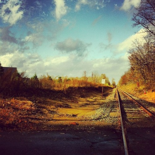 Tracks that run by the house. Just something about railroad tracks.