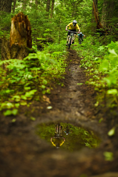 One of the first rules of the trail…ride straight through the puddles.