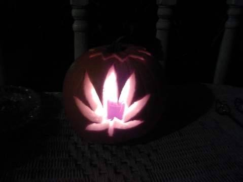trip-monster420:  Happy Halloween, I hope you like my pumpkin :) stay high.