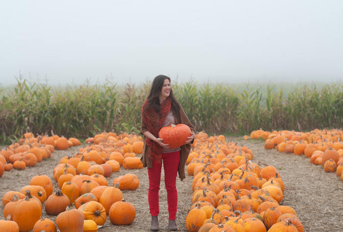 I had so much fun going to the pumpkin patch a few days ago in Half Moon Bay with Jonathan. The ocean is only a half hour from us, just over the mountain. There is a lot of coastal agriculture on this stretch of Highway 1, and it's just gorgeous, despite the dramatic fog! We stopped into Farmer John's Pumpkin Patch and picked up a red kuri pumpkin (which the farmer said was the sweetest). Slice and bake your pumpkin until soft (350, approx 30 min. depending on size, or microwave 5 min). Scoop out the flesh (discard seeds) and cool. Combine the pumpkin with a frozen banana, ice, honey, milk (I used almond milk) and a dash of cinnamon and nutmeg. This is great for breakfast or dessert. To fancy-it-up, you could even add ice cream! If you're in a time crunch, you could always use canned pumpkin as well. Sprinkle a little cinnamon on top before serving. Happy Halloween! By Erin Gleeson for The Forest Feast