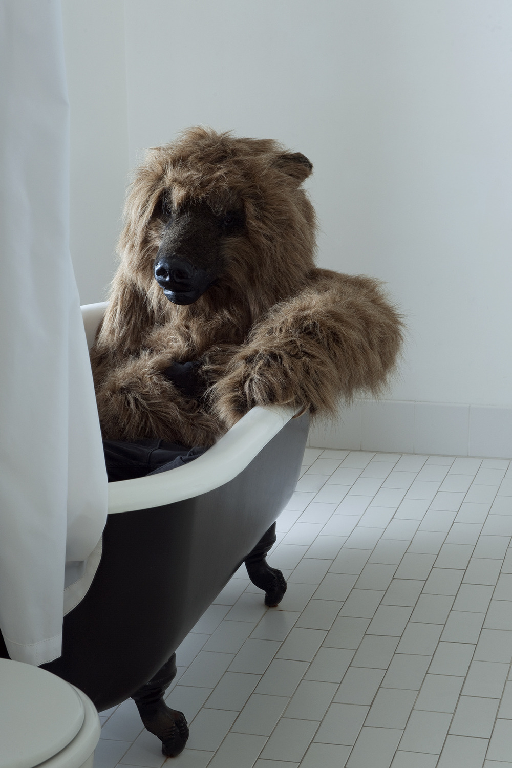 Bear in Bath at the Ace Hotel.