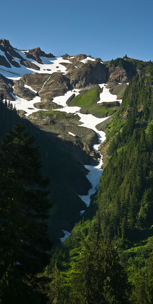 timidsouls:  Duckabush Headwaters (by Crest Pictures)