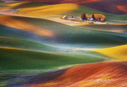 Frosty Morning Palouse by Chip Phillips