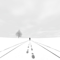 Wrong Way by Hossein Zare