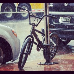 ilevelcities:  Poor little guy. #rain #bmx #downtown #austin #tx #atx #bike #cycling #6thstreet