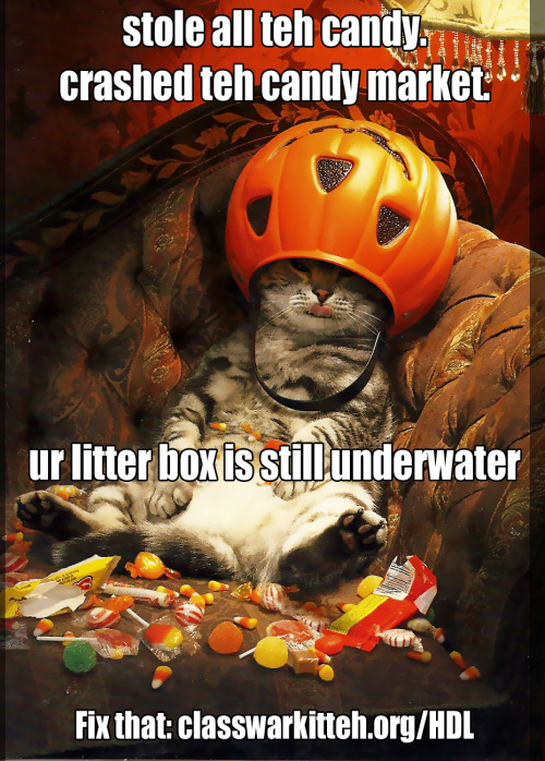 Don't let teh kittehs who stole all the candy get away with it. Get involved with the Home Defenders League!