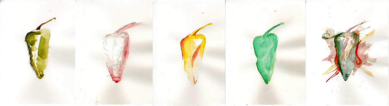 Chili pepper studies