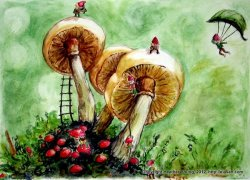 Elves. Mushrooms.  Elves and mushrooms.
