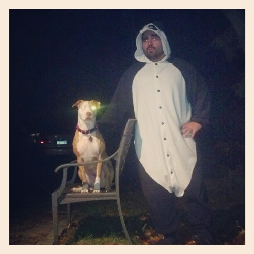 A Panda and his Dog