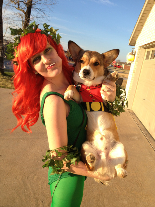 thefrogman:  Poison Ivy and Robin cosplayed by Sami [tumblr]
